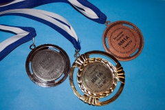 Награды 2013